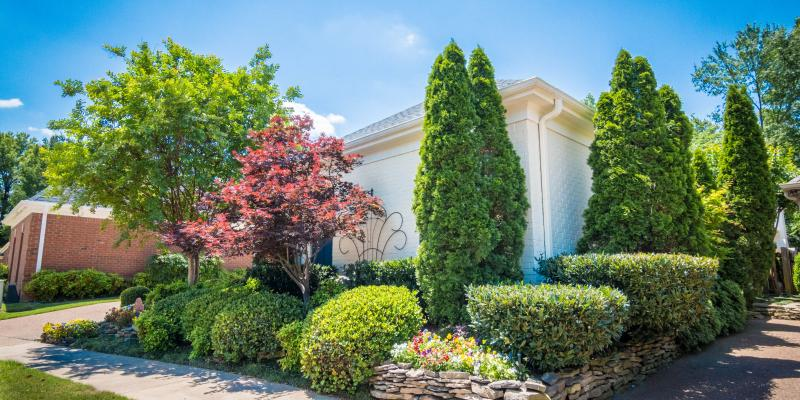 A variety of full, healthy, green and pink trees in a front lawn. These trees and shrubs have been taken care of by the professionals at Herbi Systems